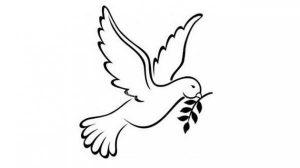 psaume-colombe Psaume 118, 153-160 : Sans limite est ta tendresse, ô Seigneur.