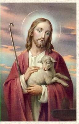 evangile-agneau-jesus