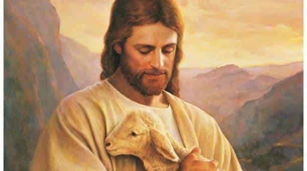 lost-lamb Samuel : «Le parcours d'un jeune homosexuel vers la foi»